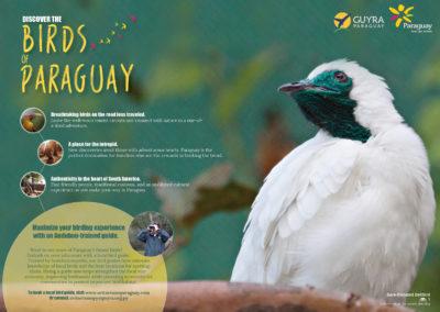 IAP_ParaguayMap_English_FINAL_Web_pg1