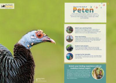 PetenMap_English_FINAL_Web_pg1